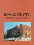 Bosnian Posavina. International Diplomatic Legitimization of Serbian Occupation and Atrocities in Dayton